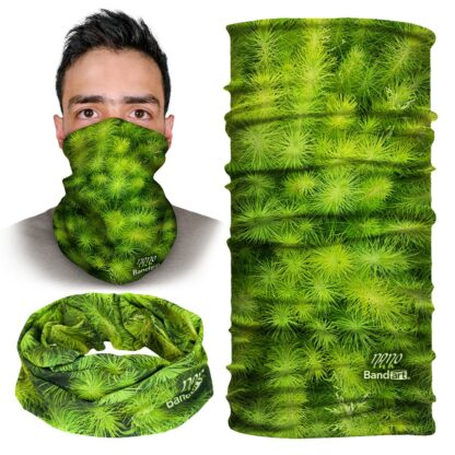 Pinos - Banda Multifuncional Máscara Face Shield tipo Buff - Bandart Diseño por Artistas Mexicanos, Empresa Mexicana